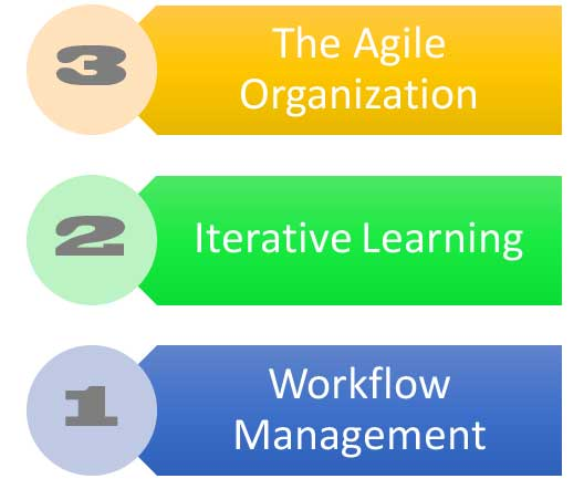 The Agile Organization